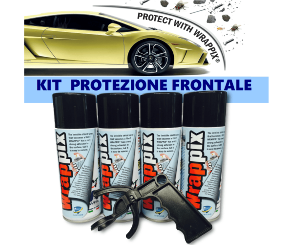 Paint Protect 400 ml